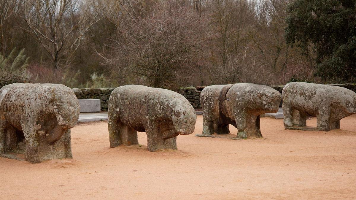 Toros de Guisando - 40 km